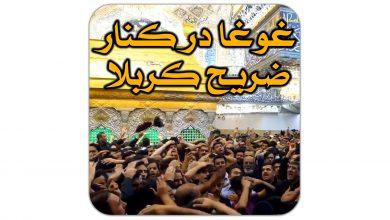 تصویر غوغا در کنار ضریح کربلا – ایام شهادت امیرالمومنین علی علیه السلام